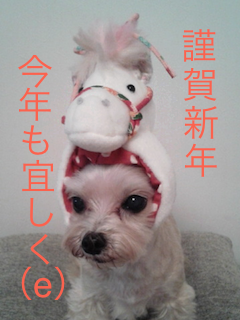 20140101-1.png