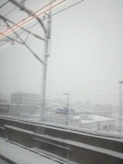 20101231-4.jpg